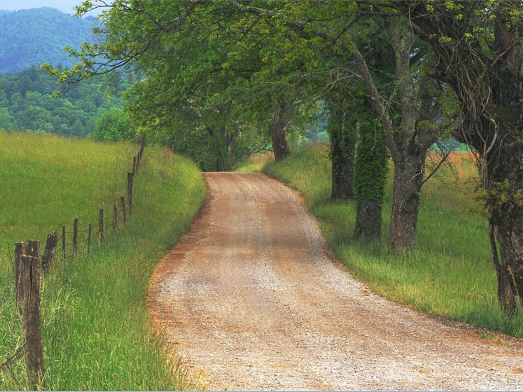 caminos_y_carreteras_20111018_1902524217